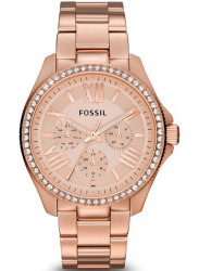 Fossil Women's AM4483 Cecile Rose Gold-Tone Watch