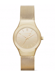 DKNY Women's Champagne Dial Gold Watch NY2104