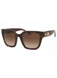 Coach Women's Havana Squared Sunglasses HC8249 541713-53