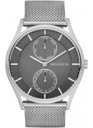 Skagen Men's Holst Gunmetal Dial Mesh Watch SKW1073